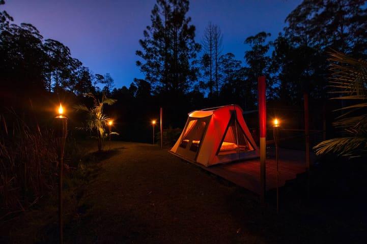 Safari tent experience & Breakfast on request - Wadeville