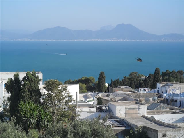Nice place to be in SidiBouSaïd 3G. - SIDI BOU SAID Carthago - Apartemen