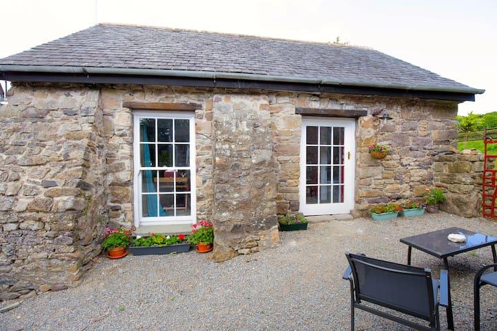 Cosy, Romantic Stone Cottage - Piltown  - Casa de campo