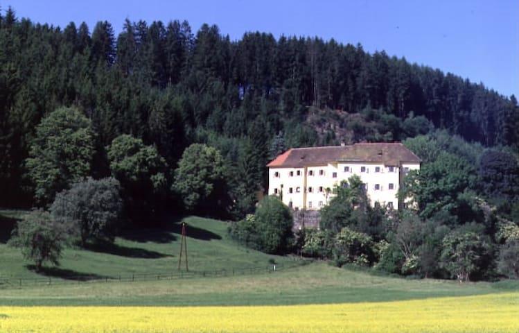 romantic apartment in old castle - Neumarkt in der Steiermark - Castle