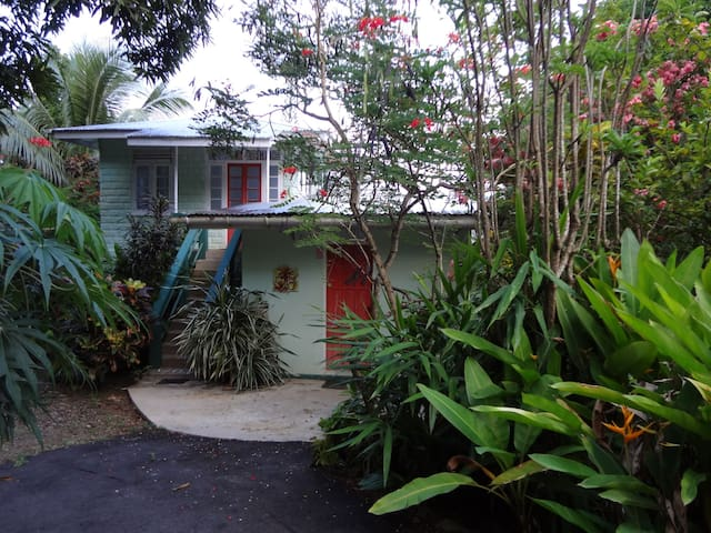 Private 1 BR a Block from the Beach - Charlotteville - Hus