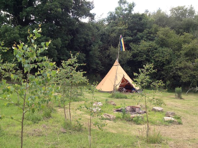 Dartmoor tentTipi - Throwleigh - Tipi