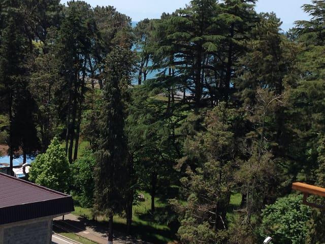 Квартира с видам на море - Kobuleti - Leilighet