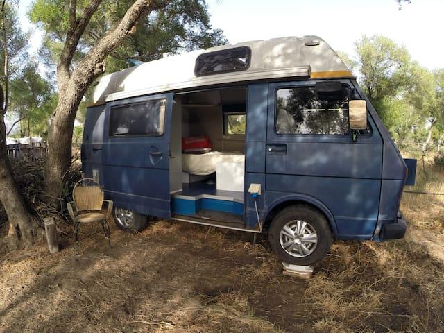 Living in a homey Van - Facinas - Дом на колесах