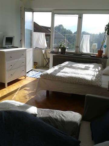 Sunny and cosy appartment - Lund - Leilighet