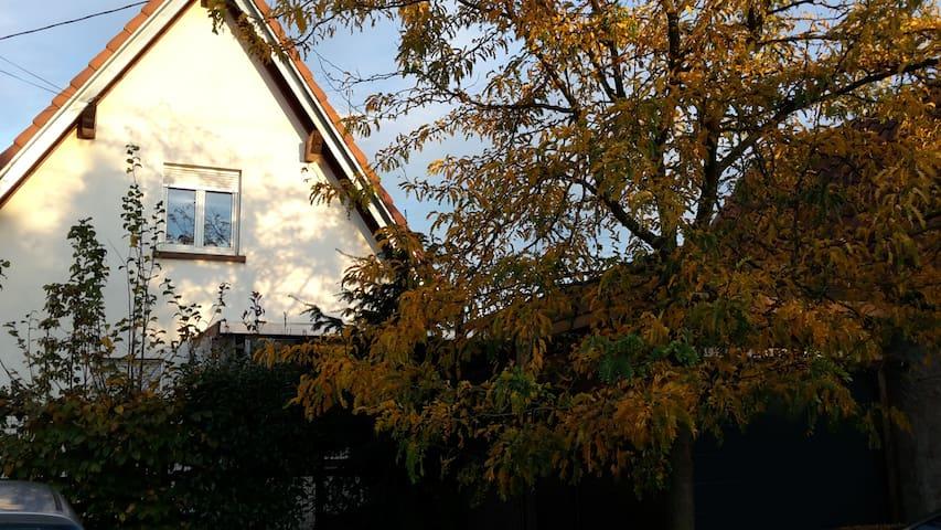 schones ruhiges Zimmer - Steinbourg - Hus