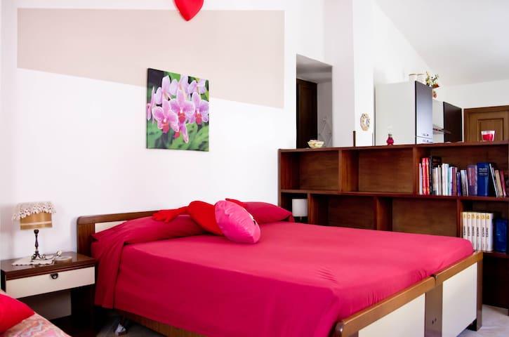 Holiday to S.Maria of Castellabate  - Castellabate - Apartmen