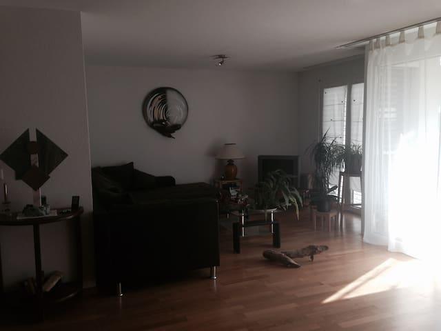 Lausanne Private room + bathroom - Préverenges - Apartamento