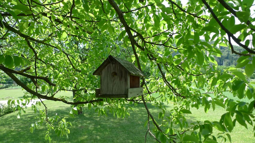 Cosy house in green country side - Mozirje - Ev